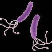 ピロリ菌感染症