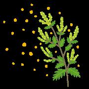 花粉症の予防方法について